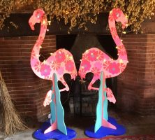 happy flamingoes